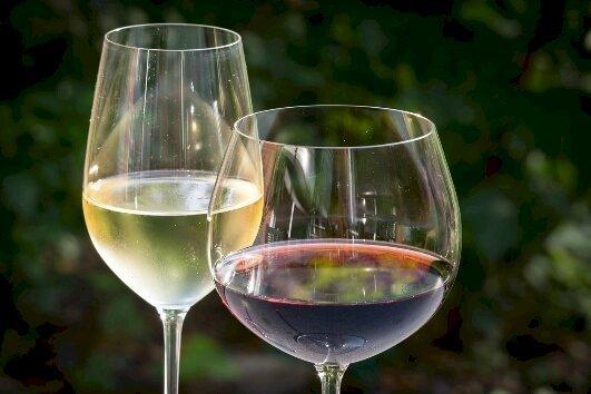 Néo Options aux côtés des professionnels du vin